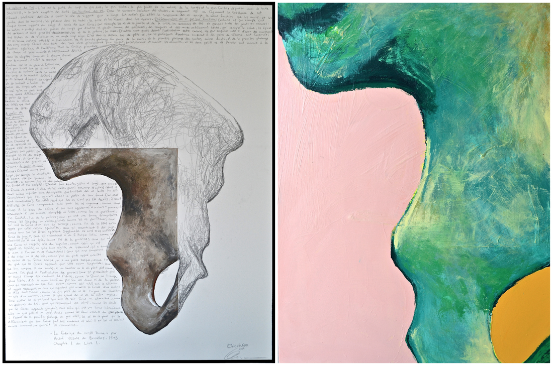 Inner Landscapes ''Coxal bone #3'' (40''x60'' - diptych)
